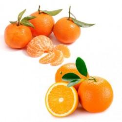 Cajas Mixtas Naranjas y...